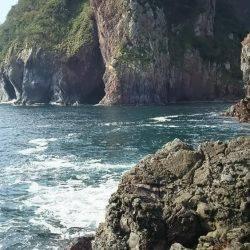 相島   山口   釣果情報 堤防 ジギング 船釣 管理釣り場 釣り情報   カンパリ全国版
